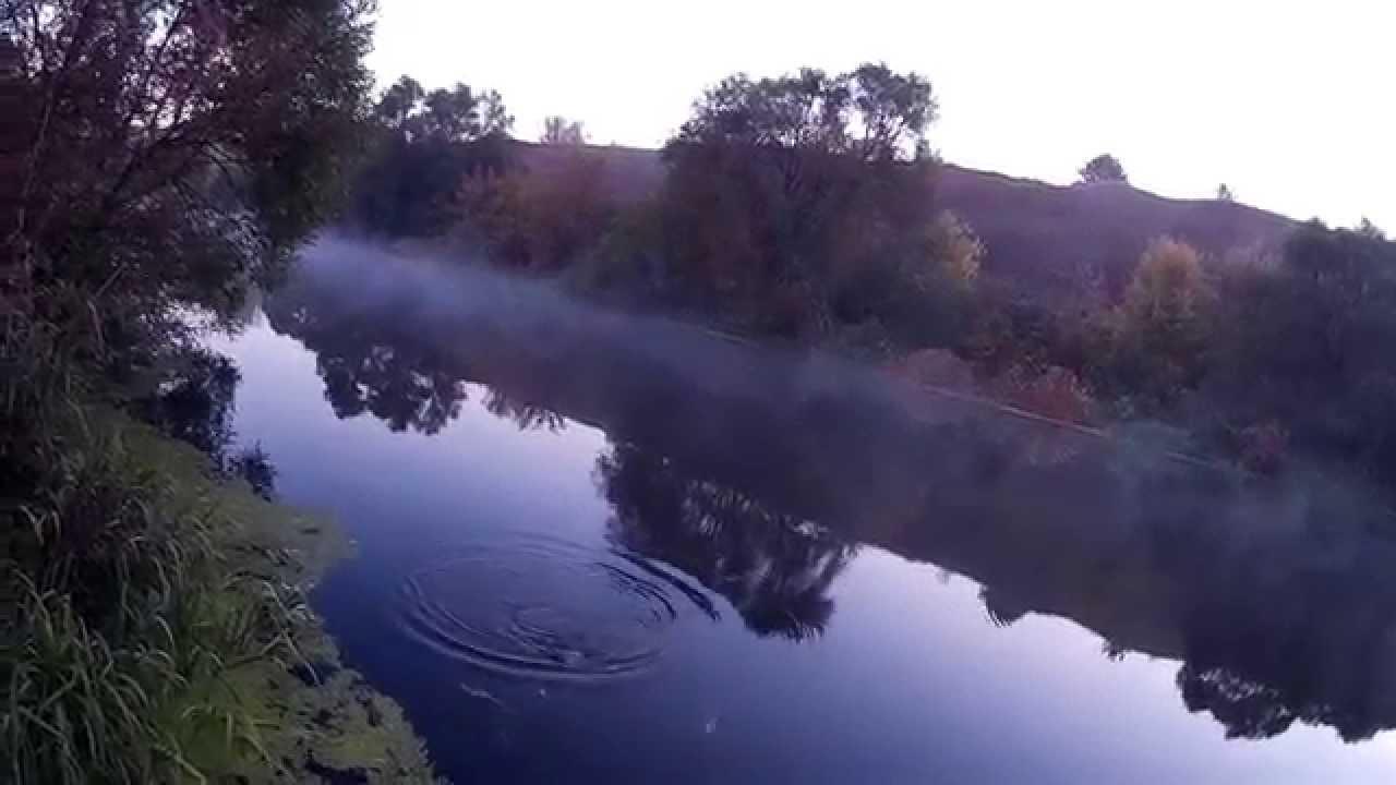 рыбалка на леща осенью видео