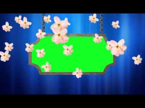 Wedding Video Background-Animated Flowers Falling thumbnail