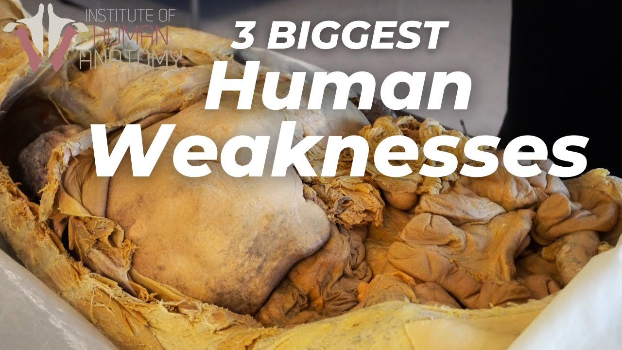 3 BIGGEST Weaknesses of the Human Body