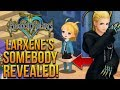 Larxene's SOMEBODY Revealed! Strelitzia and Lauriam Connections and Mysteries!