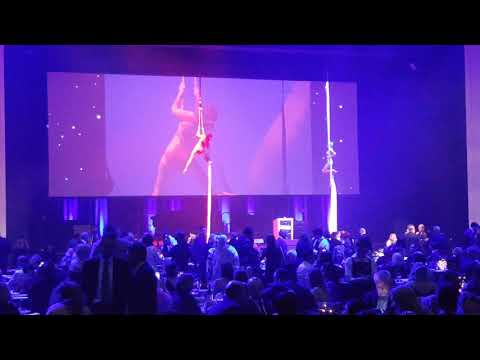 Aerial Artists Adelaide Australia performance Adelaide Convention Centre Corporate Event
