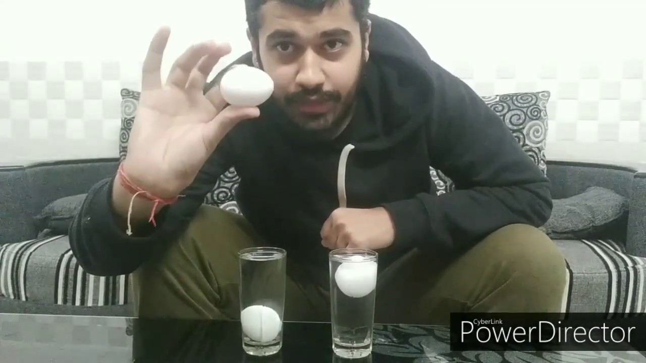 How To Check Eggs Are Fresh Or Not   How To Know Egg Is ...