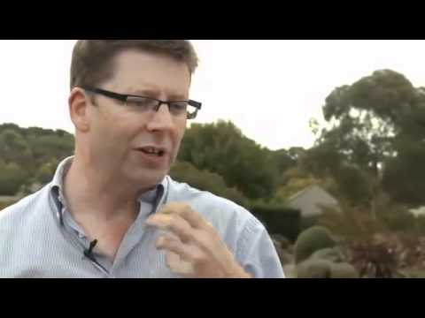 WineSenseTV.com - Putting Australian Pinot Noir on the Map
