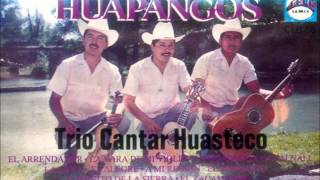 Trio Cantar Huasteco- La antonia