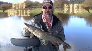 Pend Oreille Pike Fishing