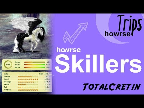 How To Make Skillers - Howrse Trips (2018)