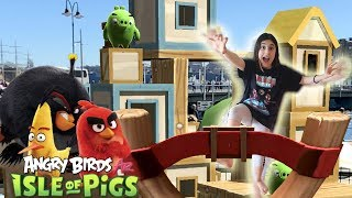 Angry Birds AR Isle of Pigs iOS primer gameplay