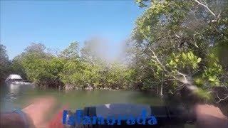 Тур на гидроцикле по городам Флориды. Затонувшая яхта и дельфины.