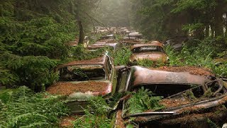 Abandoned 70-year-old Traffic Jam. You Haven't Seen This Before!
