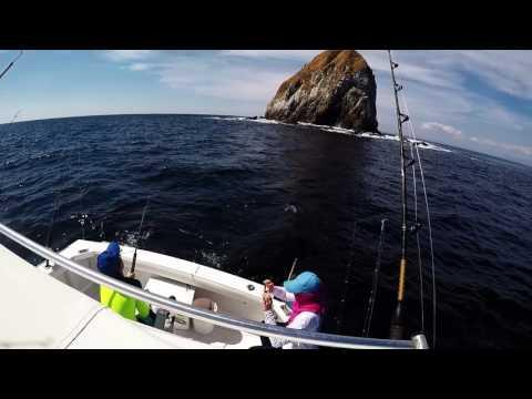 Deep Sea Fishing - Costa Rica