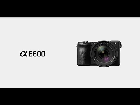 Product Feature | Alpha 6600 l Sony | α
