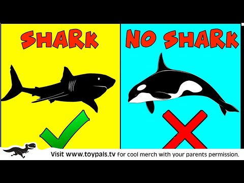 SHARK Or NO SHARK? Fun Kids Game W/ Toy Sharks, Sea Creatures + Toys