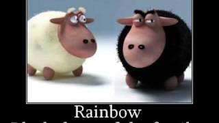 Rainbow - Black sheep of the family