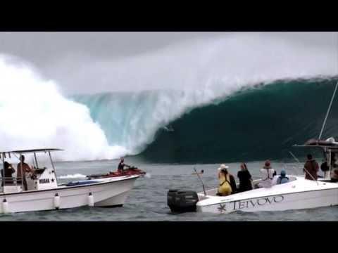 SURFER- The Original Since 1960