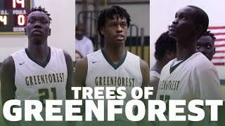 7-foot-3 freshman madelo deng and 7-foot gai chol will be major contributors for greenforest (ga) alongside 6-foot-11 (middle tennesee commit) chris...