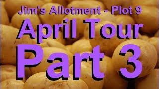 Jim's Allotment - Plot 9 - April Tour Part 3 - All about planting Potatoes and Tour