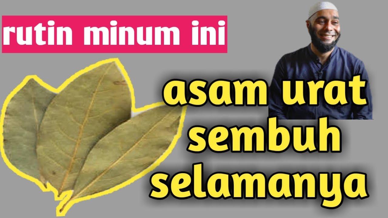 resep jsr dr zaidul akbar manfaat daun salam sebagai obat ...