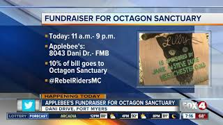 Fundraiser for Octagon Sanctuary