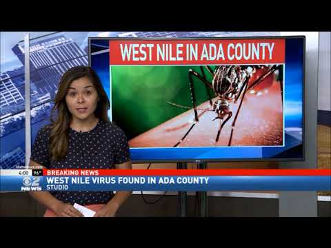 West Nile Virus Found in Ada County