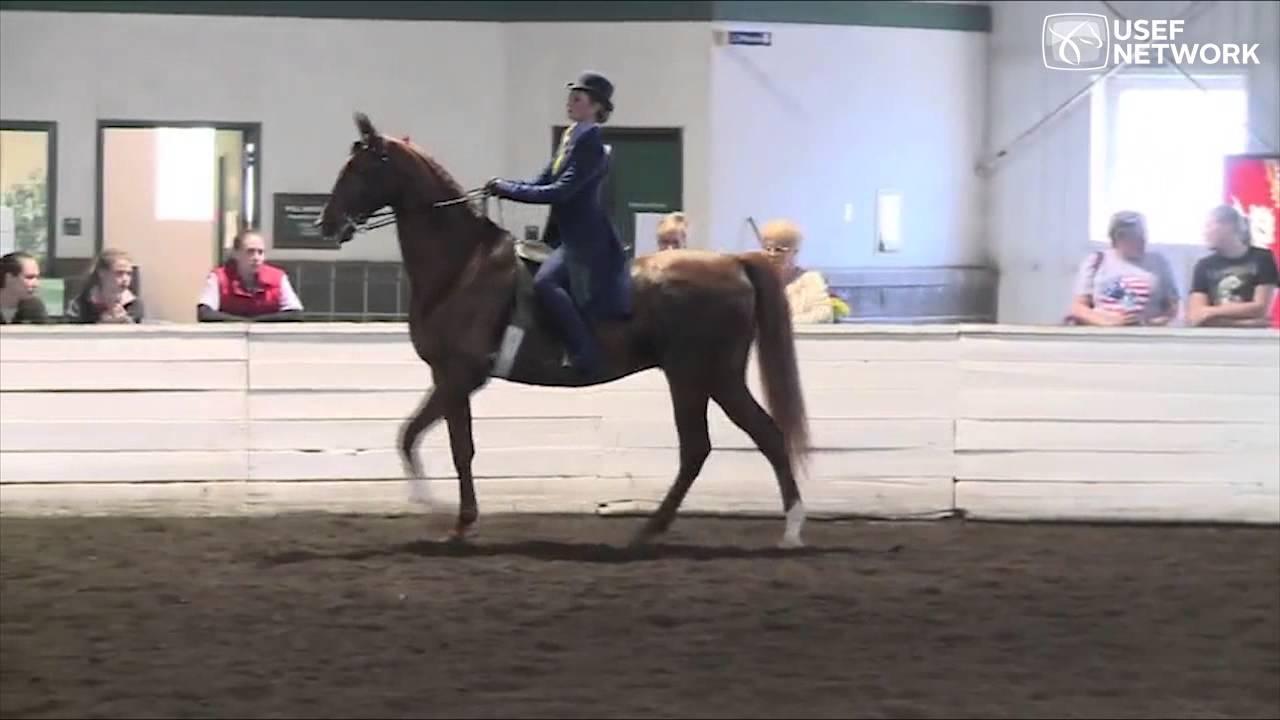 Team Canada 3 Gaited Patterns At The U S Saddle Seat Invitational