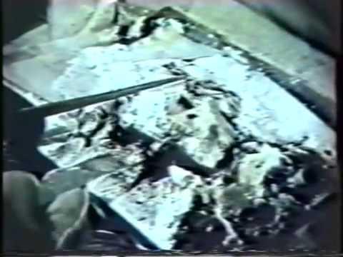 Burning and Extinguishing Characteristics of Plutonium ...