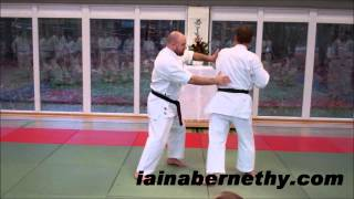 Practical Kata Bunkai: Pinan / Heian Combination Drill