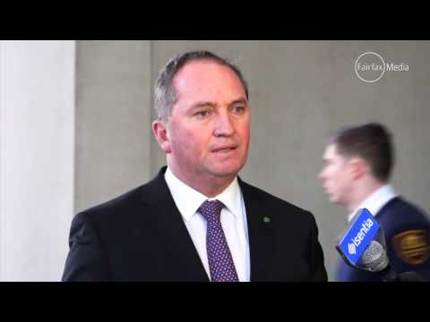 "Barnaby Joyce on Johnny Depp's dogs ""It's time Pistol & Boo buggered off back to the United States"""