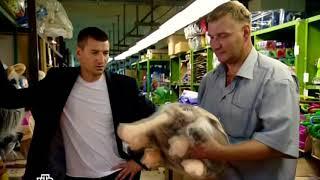 Олександр Устюгов в ролі Р. Р. Шилова. Шилов і Джексон. На складі іграшок.