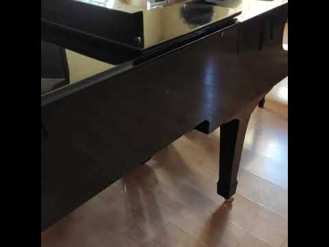 Olerem onsuz (piano)