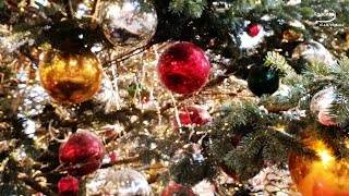 Download НОВОГОДНЯЯ МУЗЫКА для Новогоднего настроения 2020 !!! Mp3 and Videos