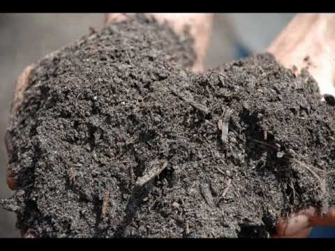 Compost tampa fl bulk organic compost fertilizer youtube for Bulk organic soil