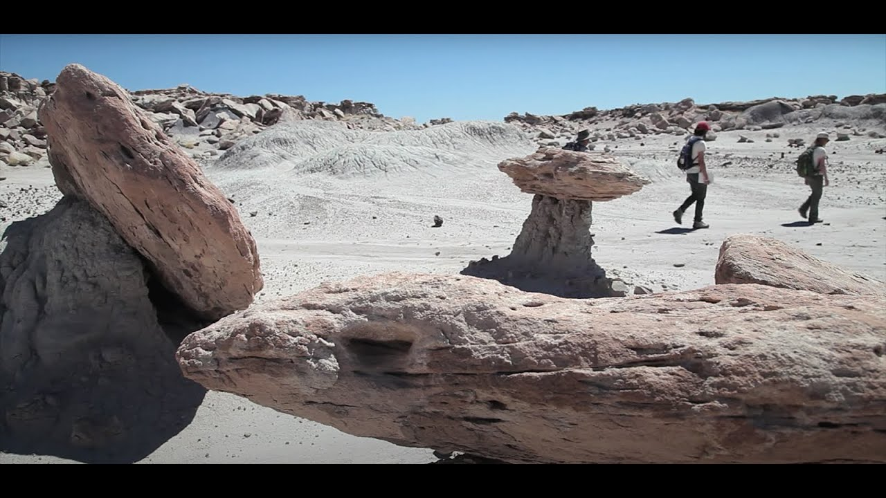 Dinosaurs In The Desert Petrified Forest Wilderness Youtube