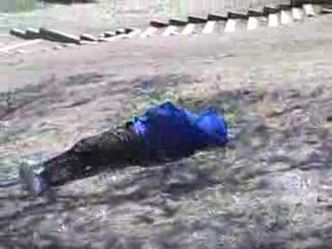 fat man rolling down a hill
