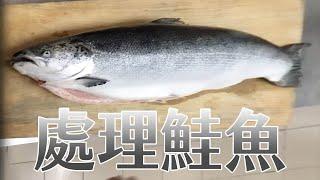 【海洋主廚愛爾文魚類處理】2018如何處理鮭魚?|2018 How to deal with the salmon?