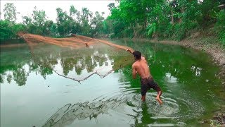 Net Fishing | Catching Fish With Cast Net | Net Fishing in the village (Part-335)