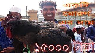 Alive Chicken Market | Travel Bangla 24 | Chicken Market In Bangladesh