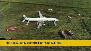 Аварийная посадка Airbus А321 в Подмосковье: по факту происшествия возбуждено уголовное дело