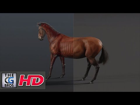 "CGI & VFX Demos: ""Horse R&D Project - A Breakdown"" - by Lonnie Kraatz"