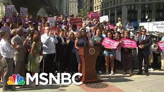What Is The 'Public Charge' Rule In Lawsuit Against President Donald Trump? | Hallie Jackson | MSNBC