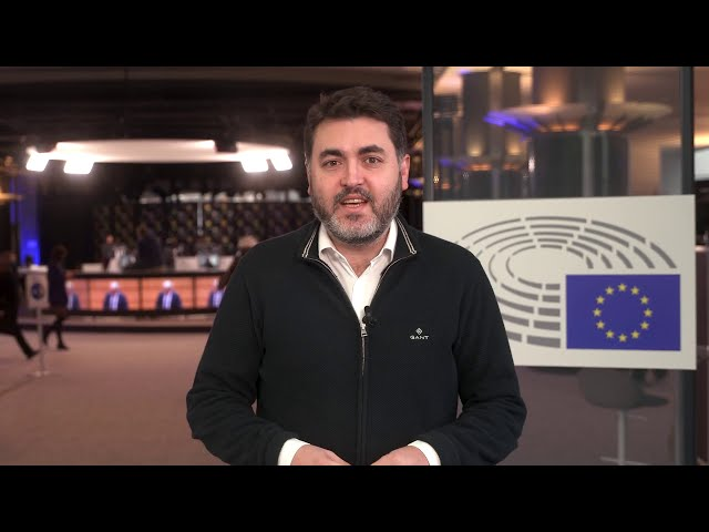 Resumen sesión plenaria enero 2021