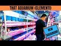 NEW AQUARIUM at Clementi! (THAT Aquarium Tour)