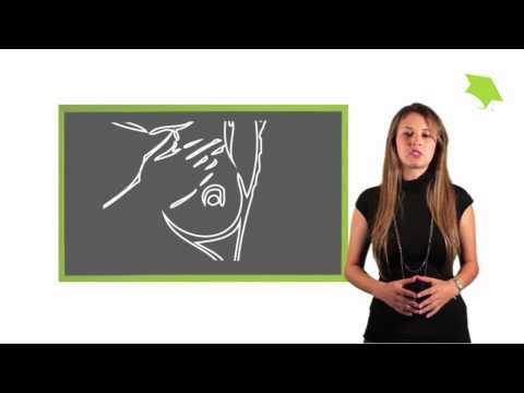 7 p´s del marketing en servicios de salud - Dr. Luis Alfonso Perez Romero PhD. de YouTube · Duración:  30 minutos 4 segundos  · Más de 34.000 vistas · cargado el 12.07.2013 · cargado por Lucia Lizcano