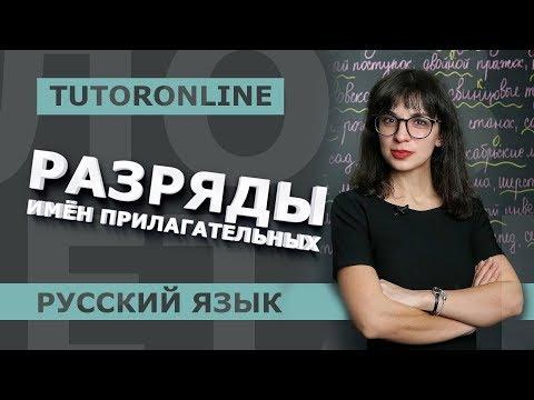 Русский язык   Разряды имён прилагательных