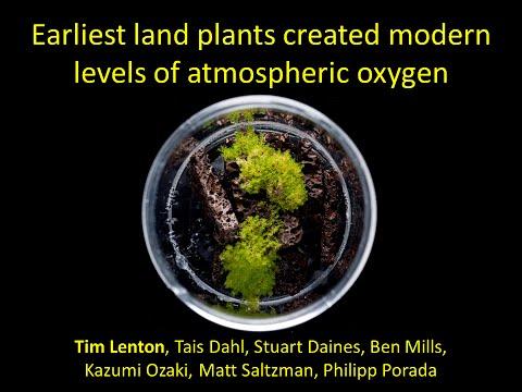 38NPS - Tim Lenton: Earliest land plants created modern levels of atmospheric oxygen