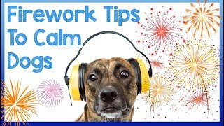 How To Calm Your Dog During NYE Fireworks and loud noises + Announcing the WINNER of PETCUBE!