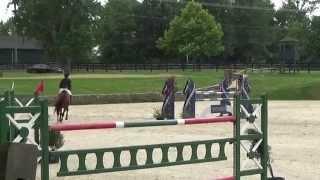 Pimpernel, Loudoun Benefit Grand Prix
