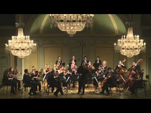 W.A.Mozart - Violin Concerto in A major KV 219, I. Allegro aperto