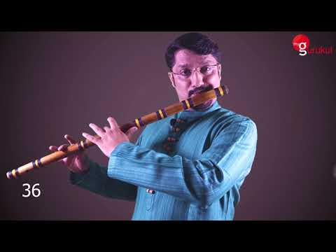 Flute Facts 4  - 6 holes 38 sounds by Vivek Sonar (myGurukul) Mp3