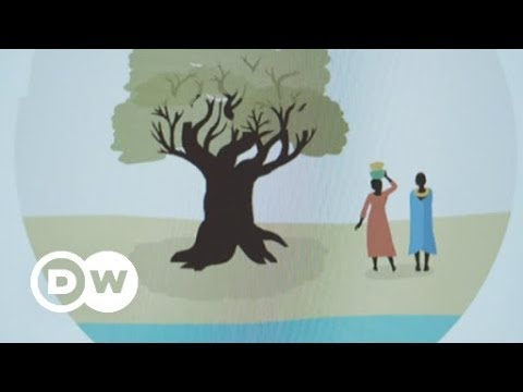 Plant a tree with one click | DW English