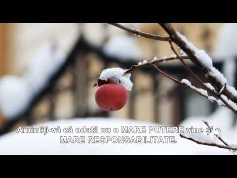 Nina Predescu & Schmidt Rodica-Am plecat in lumea mare (Official Video) NOU from YouTube · Duration:  4 minutes 20 seconds